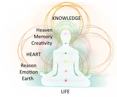 Image with seven chakras together with knowledge and life.
